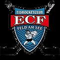 EC Feld am See