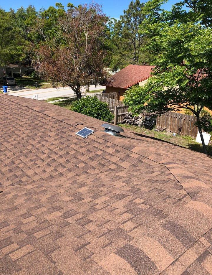 roof 5.jpg