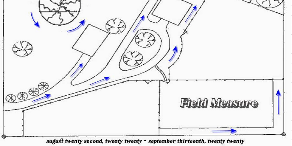 Field Measure
