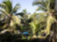 vista jardim 4.jpg