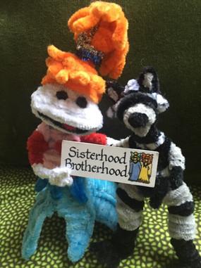 Lolly Raccoon Brotherhood Sisterhood.JPG