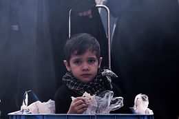 Hunger: Causes, Solutions, The Government, and NGOs