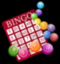 Bingo Night Coming in April!