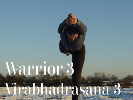 DAY 9 - Warrior 3 #wildlove30days