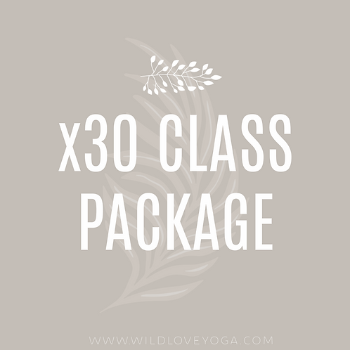 x30 Class Package