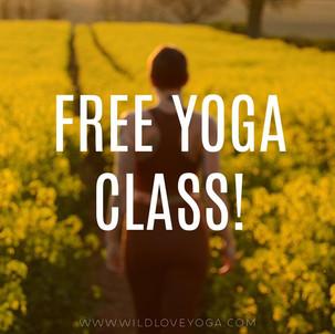 FREE CLASS! Celebrating International Yoga Day!