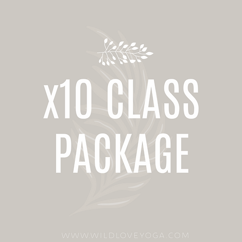 x10 Class Package