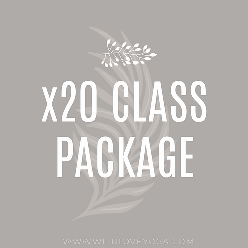 x20 Class Package
