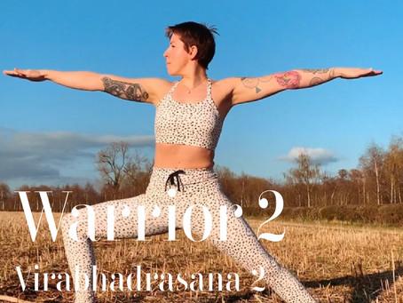 DAY 19 - Warrior 2 #wildlove30days