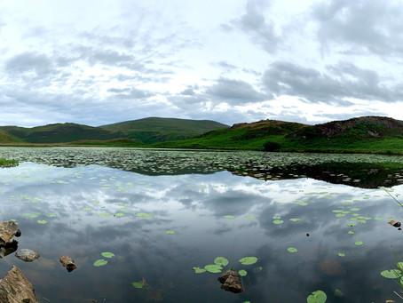 Wildlove Walks - The Bearded Lake Aberdovey.