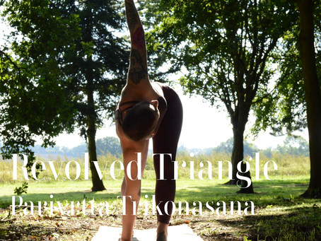 DAY 22 - Revolved Triangle Pose #wildlove30days