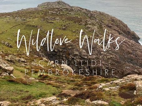 Wildlove Walks - Carn LIidi Coastal Path
