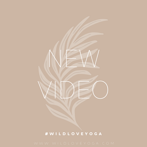 NEW VIDEOS!