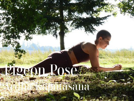 Day 25 - Pigeon Pose #wildlove30days