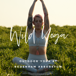 Outdoor Yoga Classes!