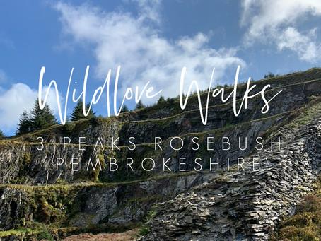 Wildlove Walks - 3 Peaks & Rosebush Quarry