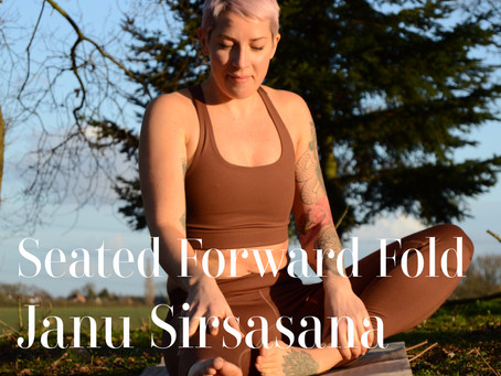 DAY 8 - Seated Forward Fold #wildlove30days