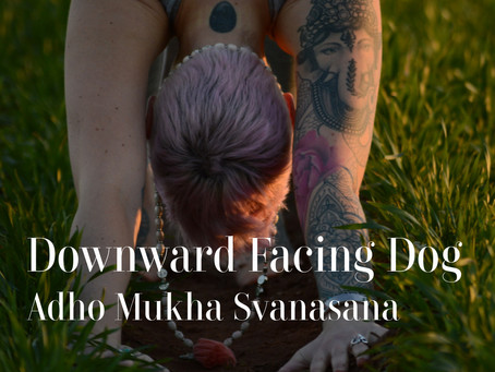 DAY 2 - Downward Facing Dog #wildlove30days