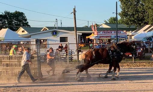 Horse Pulls