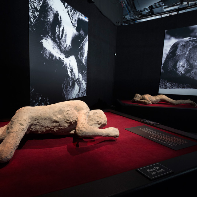 POMPEII: The Exhibition now at Pacific Science Center