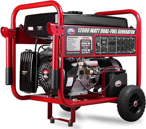 All Power 9000 Watt Dual Fuel Portable Generator with Electric Start