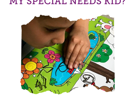 Homeschool my special needs kid? Me?