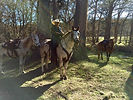 horseback riding Bandera City Park