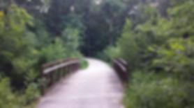 Wheaton Prairie Path