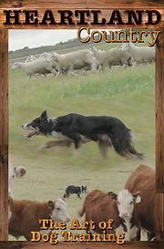 dog_training.jpg