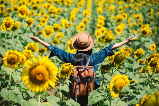 garota-feliz-no-campo-de-girassol_1150-1