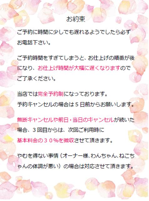 SnapCrab_NoName_2019-5-22_15-12-19_No-00