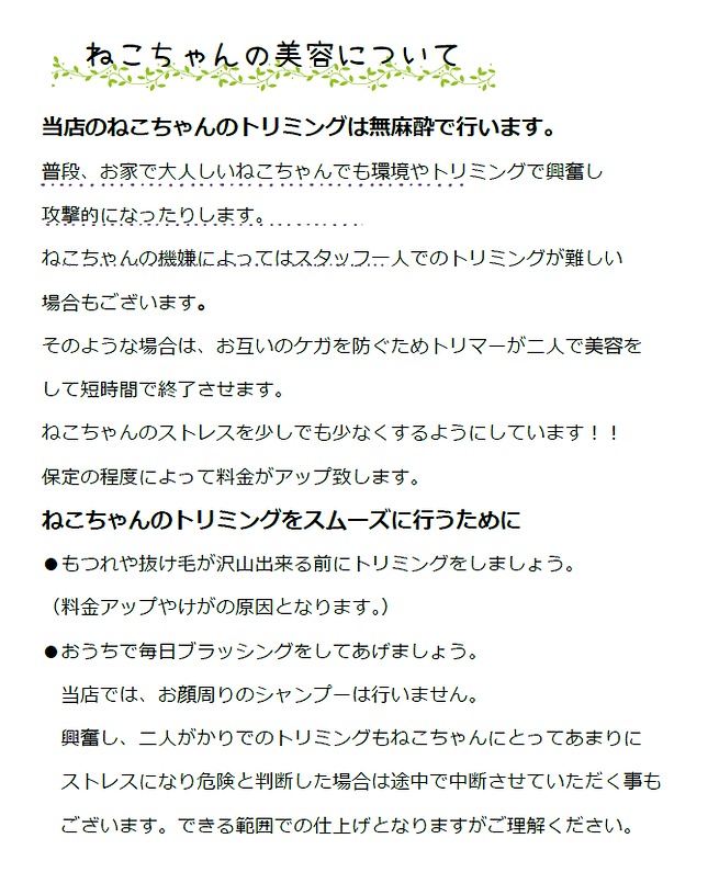SnapCrab_NoName_2019-5-21_6-45-21_No-00.