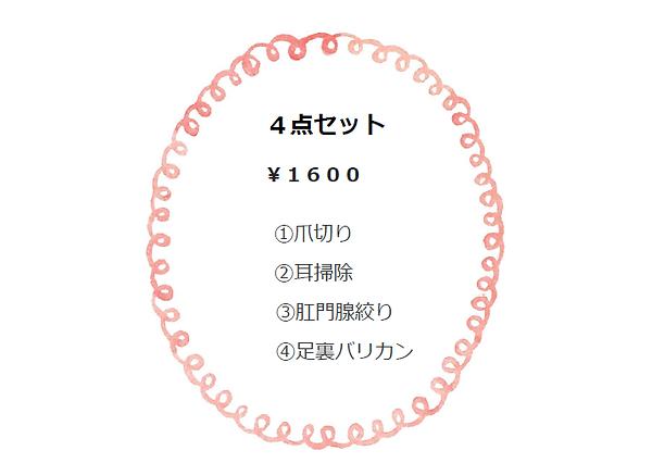 SnapCrab_NoName_2019-9-28_15-30-48_No-00