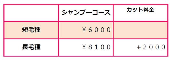 SnapCrab_NoName_2021-1-16_15-44-18_No-00
