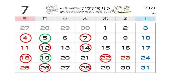 SnapCrab_NoName_2021-5-7_9-45-11_No-00.j