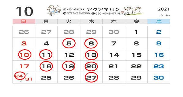 SnapCrab_NoName_2021-8-21_18-31-1_No-00.jpg