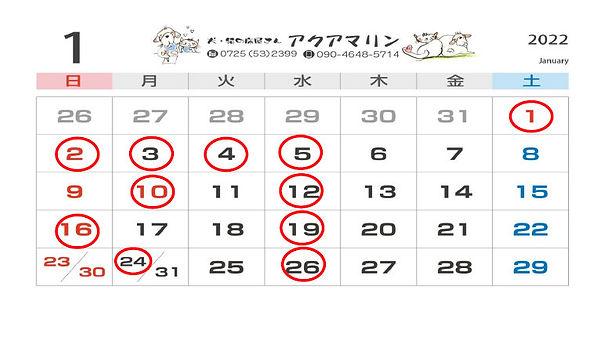 SnapCrab_NoName_2021-8-21_18-32-26_No-00.jpg