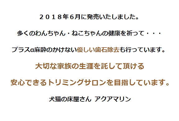 SnapCrab_NoName_2019-5-10_11-33-6_No-00.