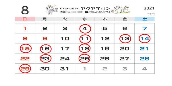 SnapCrab_NoName_2021-5-1_12-29-37_No-00.