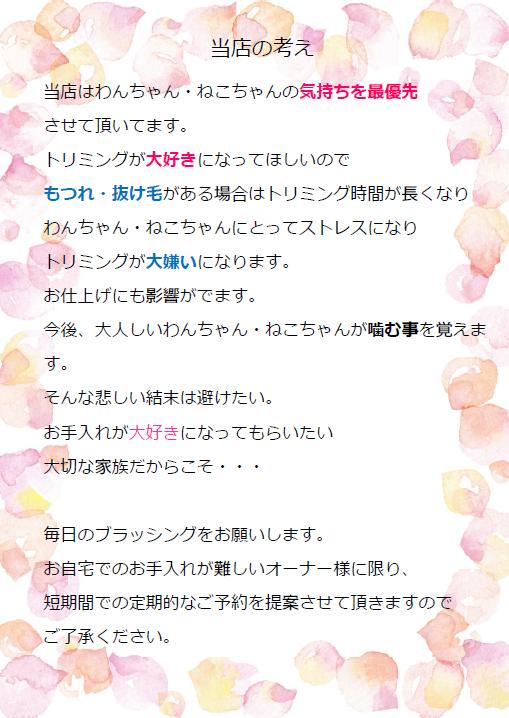 SnapCrab_NoName_2019-5-21_16-51-7_No-00.