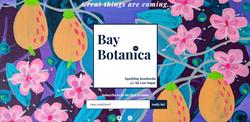 Bay Botanica