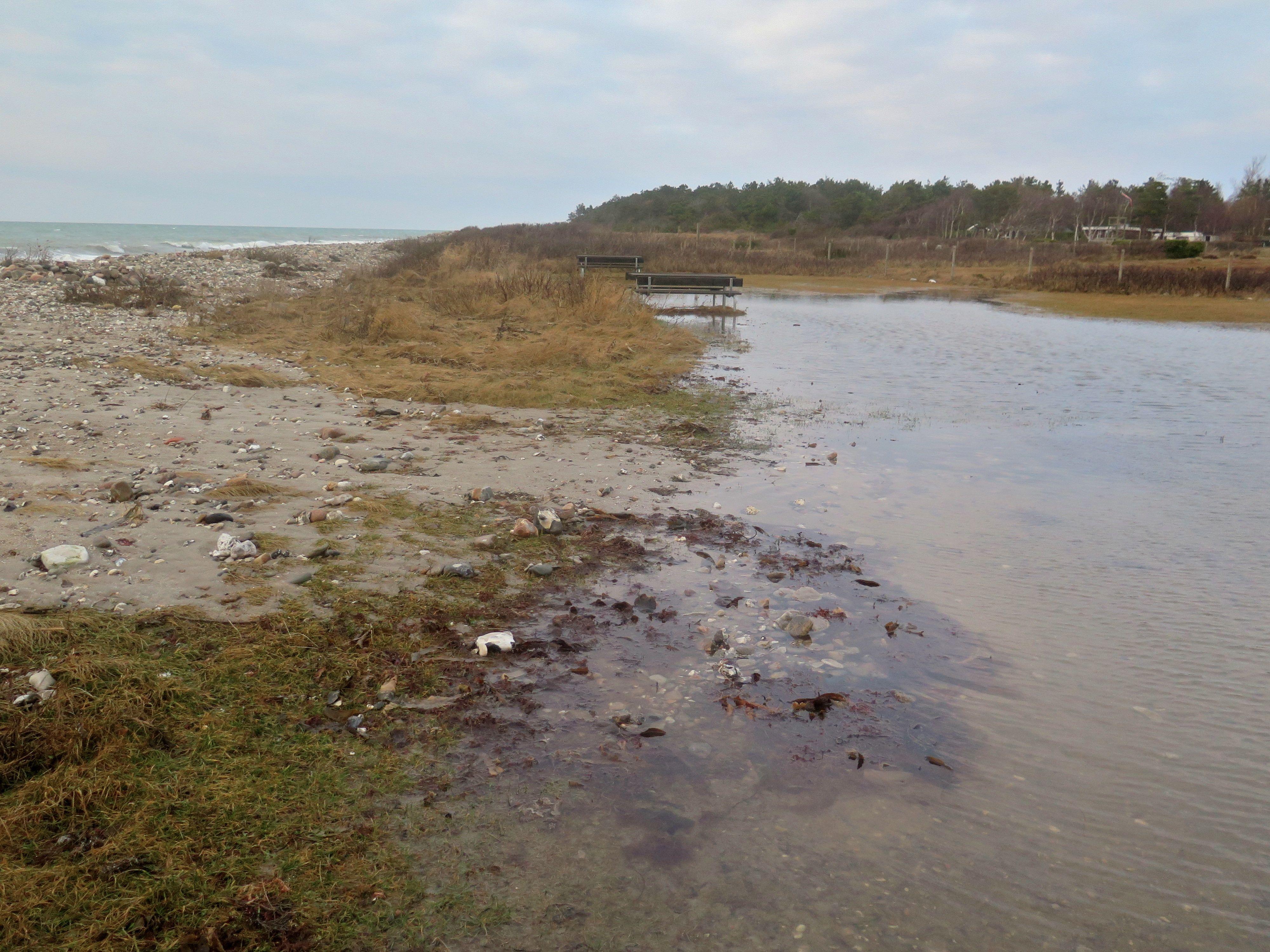 Stranden efter stormen Urd7