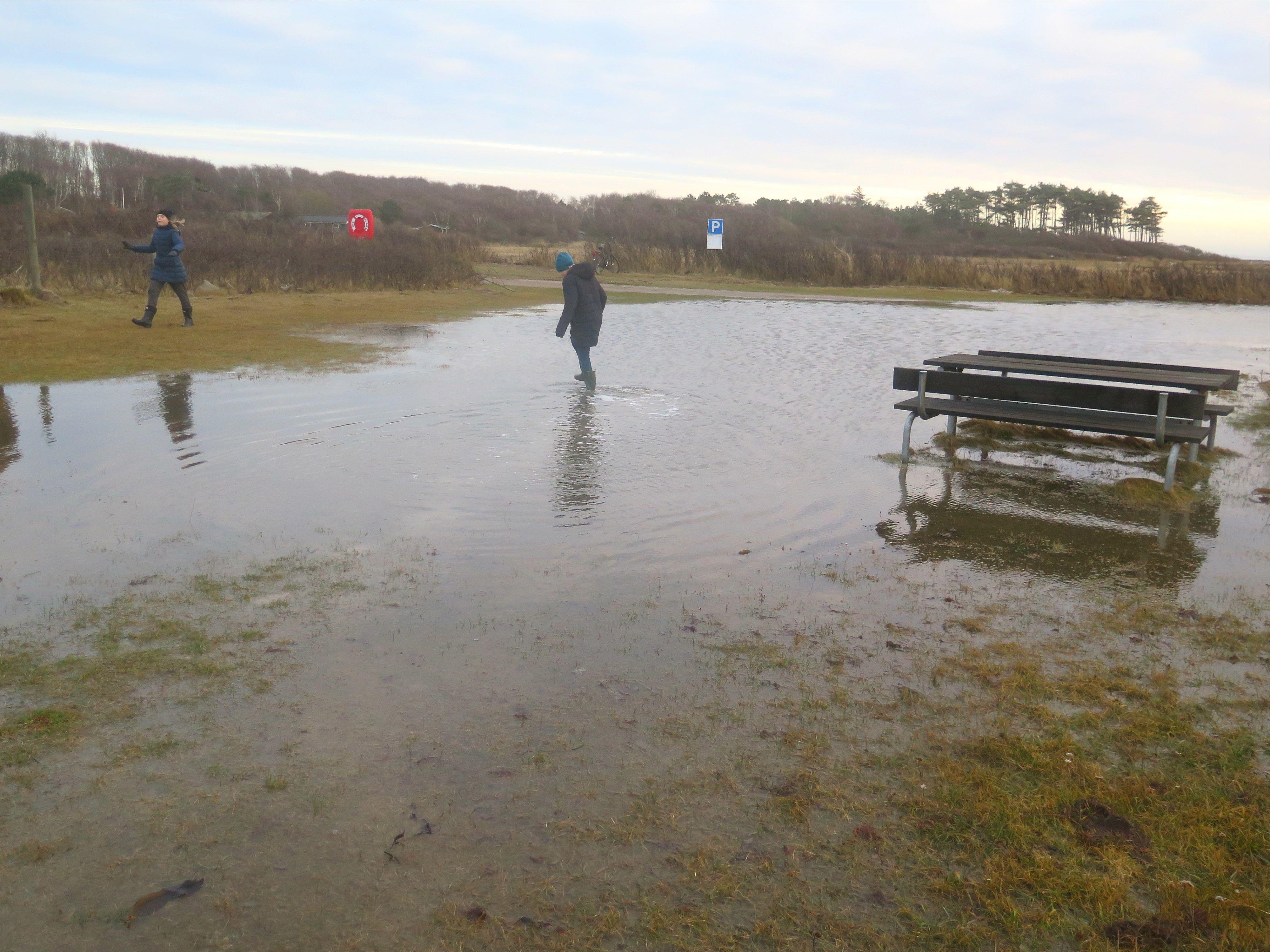 Stranden efter stormen Urd8