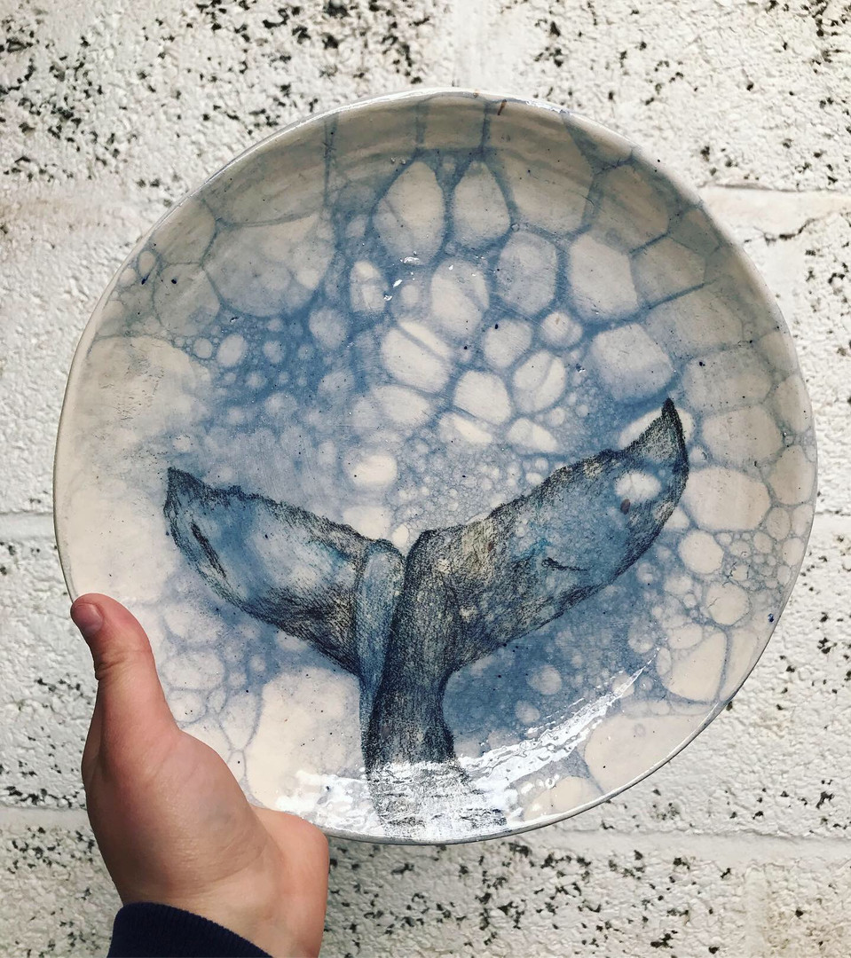 Whale tail plate