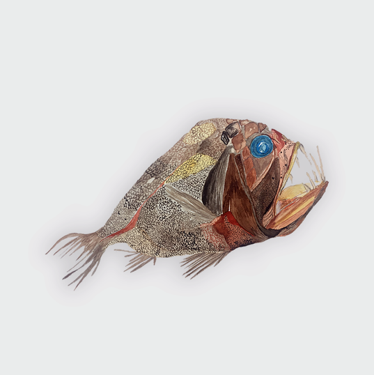 Anglerfish print.png