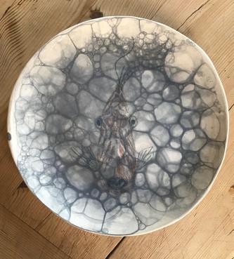 Inquisitive fish plate