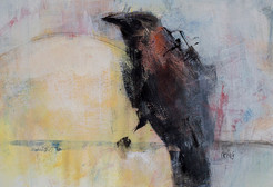 Raven Light