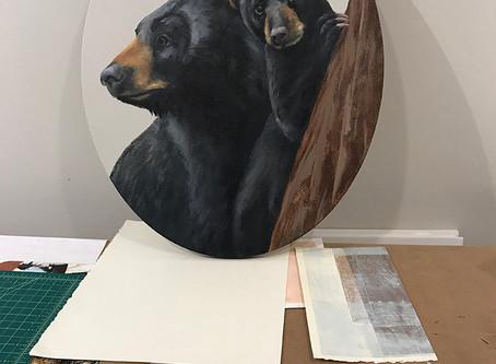 Studio Bears