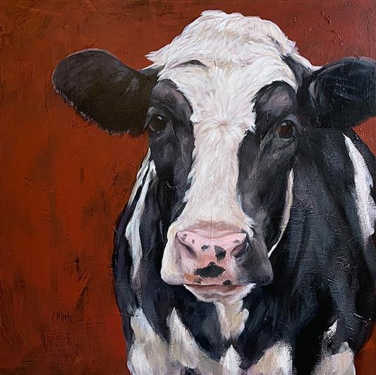 Sept Cow