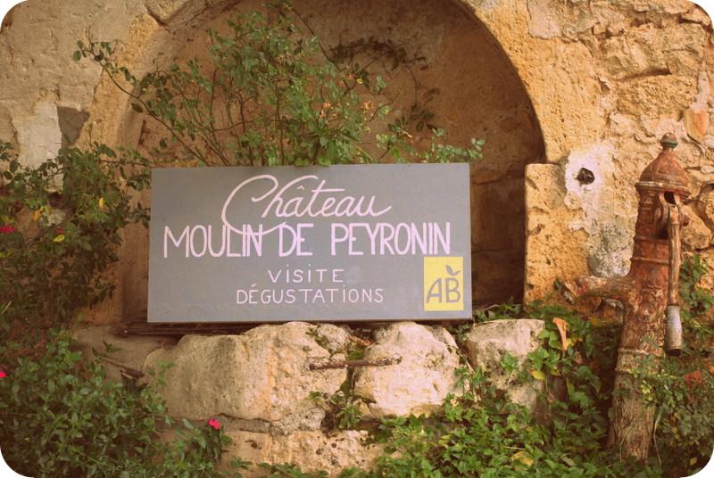 Château moulin de peyronin